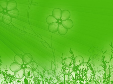 green flower  flowers  nature background wallpapers on desktop, Beautiful flower