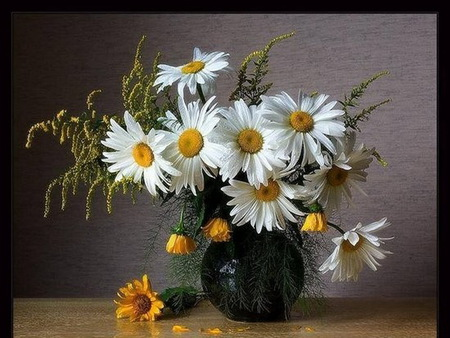 Daisies still life - white and yellow, flowers, daisies, vase, yellow