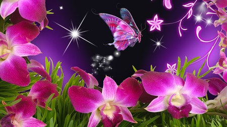 Orchids Pink - butterfly, flowers, purple, orchid, bright pink, vines, stars, firefox persona