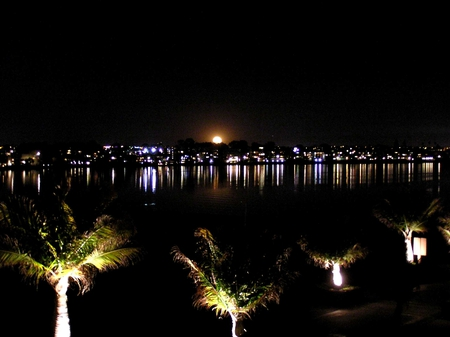 Beach at night with beautiful moon - moon, sea, night, city, beach, lights, palmtrees