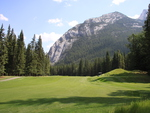 Mountains & tall trees in Banff Alberta National Park 20