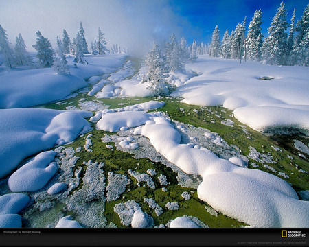 Melting Snow - green, ice, cold, foggy, snow, white, grass, mountain, nature, winter