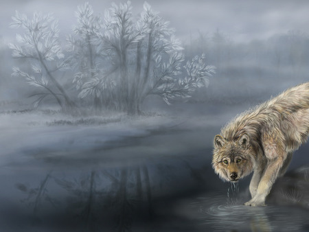 Wolf in mist - river, mist, tree, sweet, animal, wolf