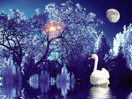 Ice blue - water, swan, trees, moon, reflection, blue, sun