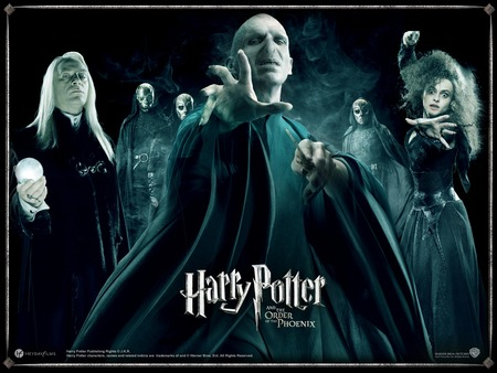 Order of the Pheonix - order of the phoenix, pure evils, the order of the phoenix, harry potter, voldemort
