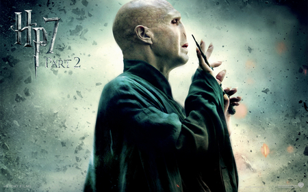 Voldemort Hp7 Part 2 - voldemort, ron, hp7 part 2, harry potter, hermione