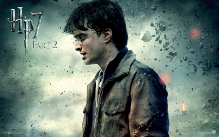 Harry Hp7 Part 2 - voldemort, ron, hp7 part 2, harry potter, hermione