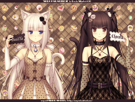 chocolate & vanilla - blu eeys, animal ears, neko, blush, cute, pretty, twin tails, anime, vanilla, brown eyes, chocolate, girls