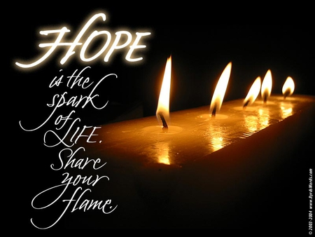 Wonderful Message♥ - flame, share, sunshine, hope, love, life, forever, believe