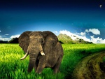 big_elephant_running_in_grass