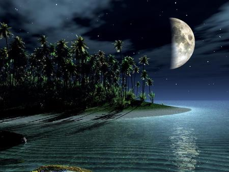 Island - island, tropical, trees, palms, moon, sky, nature, sea
