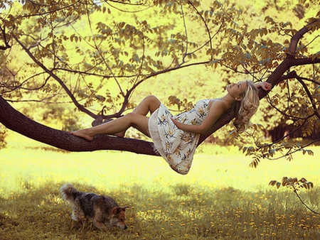 Summer Dream - dreaming, summer, bright, friends, yellow, girl, dog, light, young, woman, sunny, forest, sun, nature, dreamer