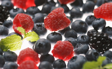 Forest fruits - photography, blackberries, fruits, abstract, forest, blueberries, raspberries