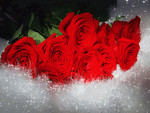 ♥ღ Lovely red roses for my DN friends ღ♥