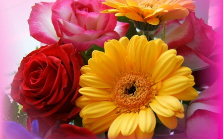 different types of flowers - Flowers & Nature Background ...