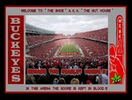 WELCOME TO THE SHOE A.K.A. THE NUT HOUSE
