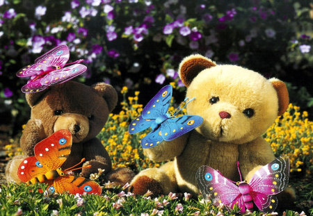 teddy with butterfly - butterfly, flowers, teddy