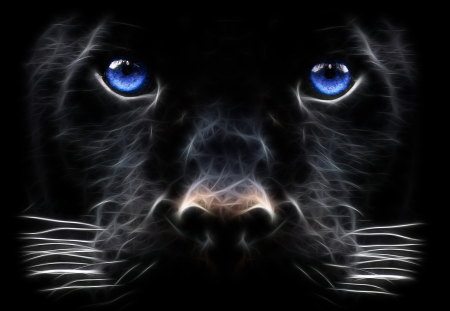 black panther - animals, eyes, black, face, jaguar, panther