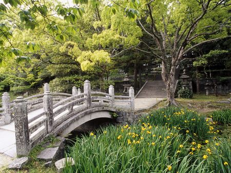 Castle Garden WDS - flowers, trees, japan, bridges, water, photography, honshu, castles, gardens