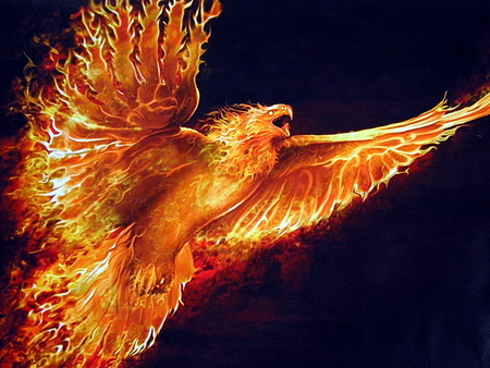 Phoenix - rise, mythology, bird, ancient, fire, flames