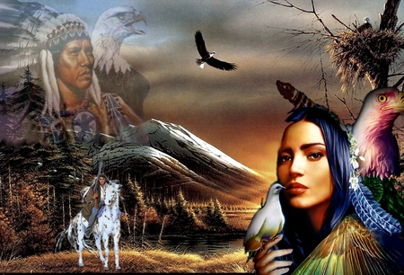 dove - indian, 2012, nature, mountain