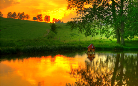 Reflection - splendor, lake, beautiful, reflection, way, pretty, path, tree, view, beauty, fall, autumn, yellow, water, landscape, sunset, grass, green, sunrise, yellow sky, trees, colorful, field, sky, colors, lovely, autumn colors, clouds, nature, peaceful