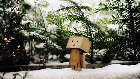 Danbo in snow - danbo, snow, tree, robot, box