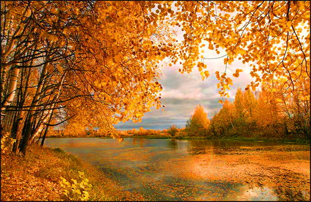 Wrapped in autumn - lake, orange, sunshine, reflection, gold, autumn