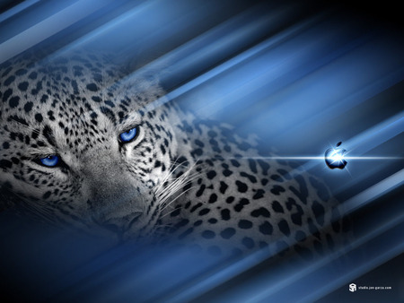 Apple - blue eyes, animals, abstrakt, cats, blue, vista, lepoard, leopard, logo, mac, cat, computers, technology, 3d, background, apple