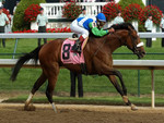 Barbaro Winning the Kentucky Derby F5