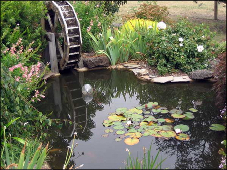 POND WITH WATER WHEEL,   Wheel, Pond, Lillies, Water