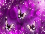 Purple Butterfly Mirage