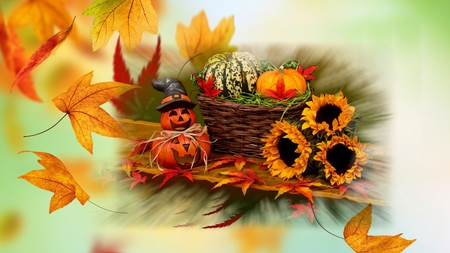 podzim,list,halloween,wallpaper - podzim, list, halloween, wallpaper
