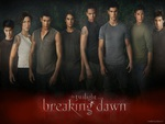 The Gang Is All Here {Breaking Dawn}