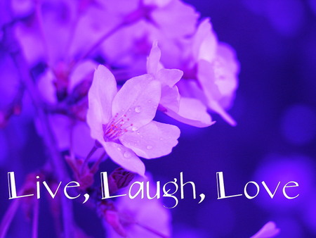Live, Laugh, Love - laugh, flowers, love, live