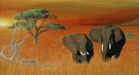 Elephants - animals, tree, sunset, elephants