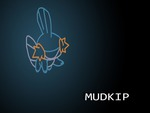 Mudkip the Mud Fish Pokemon