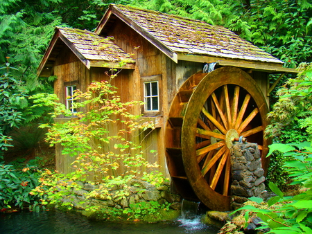 Water mill - wood, beautiful, river, old, mill, water, hidden, calm, forest, water mill, greenery, creek, green, summer, trees, nature, peaceful, stream