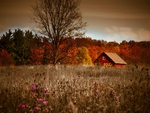 HOUSE ON AUTUMN FIELD