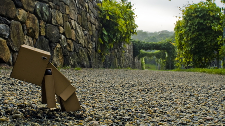 Danbo - green, cool, fun, road, paper, funny, nice, photography, awesome, park, danbo, photo, robot