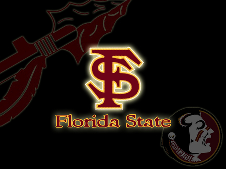 Florida State Seminoles - football, florida state, florida state university, state, fsu, seminoles, florida
