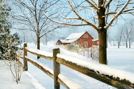 Down on the Farm at Christmas - Winter & Nature Background ...