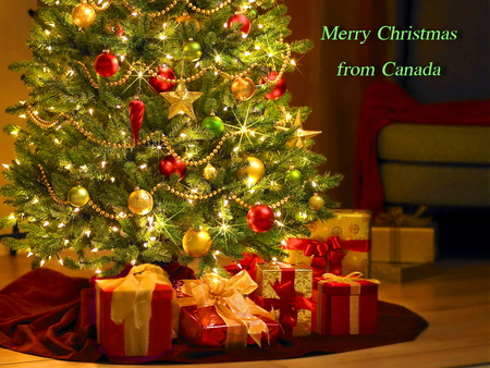 Merry Christmas - christmas, greeting, canada, lights, tree, gifts