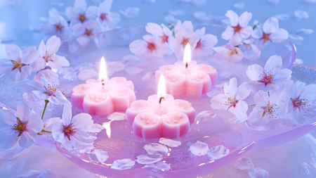 Lovely Pink Candles Light Flowers Beautiful