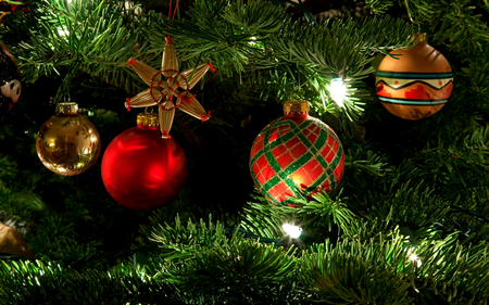 Magic Christmas - balls, beautiful, red balls, pretty, beauty, xmas, magic, magic christmas, red, christmas tree, holiday, happy new year, new year, colorful, christmas light, colors, lights, lovely, merry christmas, christmas, christmas star, ball, light, photography, christmas decorations, christmas balls