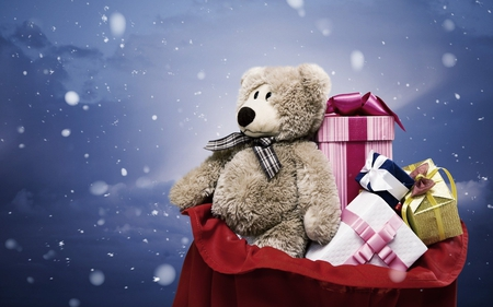 Teddy Bear - bears, christmas, teddy bear, teddy, animals, snow, beautiful, gift