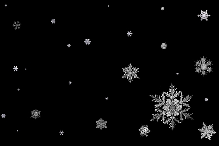 Snowflakes (snaigės) - snowflake, black and white, winter, snowflakes