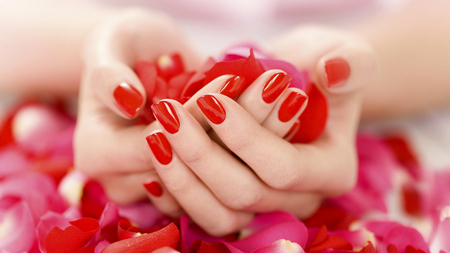 With Love for Luiza (Dreamer-girl) - flowers, polish, beautiful, friendship, pink, pretty, beauty, hands, nail, flower, photo, love, red, fantasy, scene, rose, lovely, rose petals, photography, roses, nature, fingers, dreamy