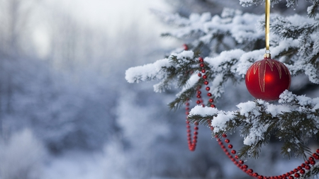 Christmas - ornement, beautiful, pine, tree, christmas, ball, photography, snowflakes, snow, forest, red, nature, winter