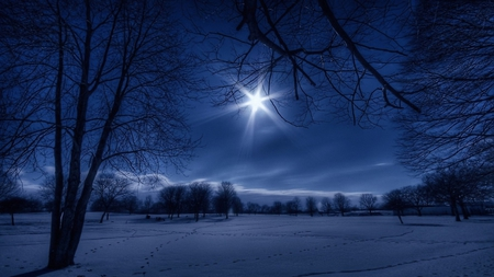 The Christmas Star - Winter & Nature Background Wallpapers on ...